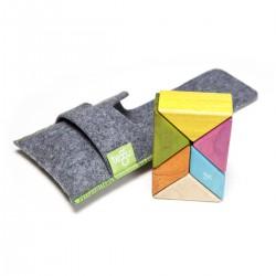 Tegu Pocket Pouch Prism Magnéticos De Madera